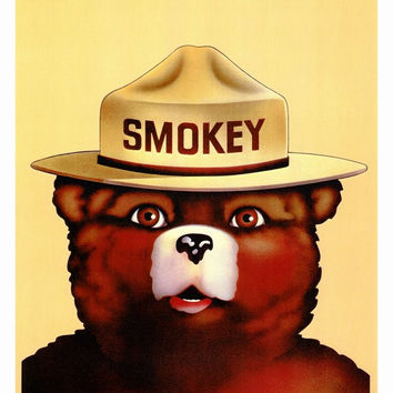 Smokey the Bear 27x40 Movie Poster (1973)