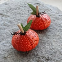 Pumpkin Sea Urchin Decor Halloween Thanksgiving Decor Pumpkin Harvest Fall Home Ornaments
