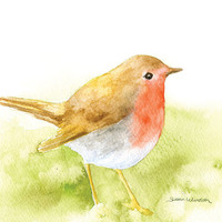 Robin Watercolor Painting - Giclee Print - Fine Art Print - 8 x 10 - Bird Painting