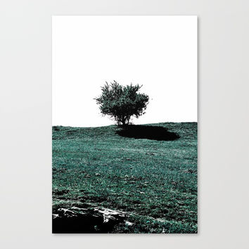 Tree On Hill Canvas Print by ARTbyJWP