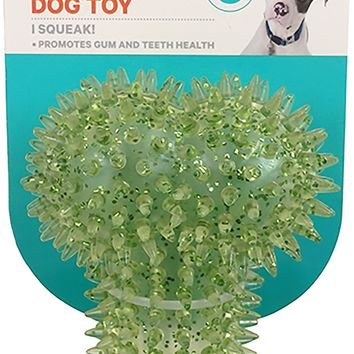 ASPCA Squeaky Glitter Bone Dog Toy-Green