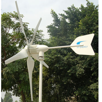 1,000 Watt 24-Volt 5-Blade Home Wind Generator with Charge Controller