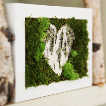 Birch Bark Heart & Moss Rustic Framed Art - Zero Care, Real and Preserved.