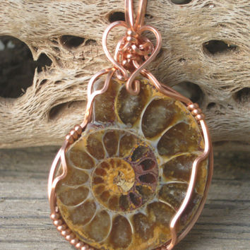 Ammonite Nautilus Fossil Pendant,  Copper Wire Wrapped Necklace