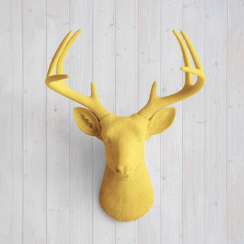 The Virginia Large Curry Orange Faux Taxidermy Resin Deer Head Wall Mount | Curry Orange Stag w/ Colored Antlers