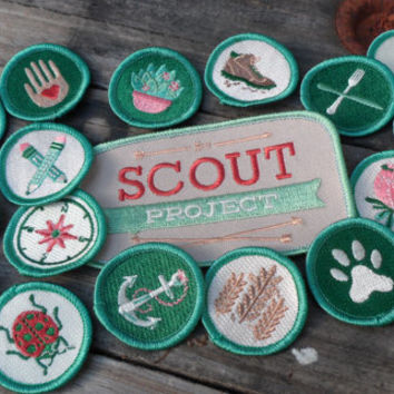 Complete Set of Modern Merit-Style Scout Badges