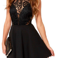 Black Sheer Lace Panel Sleeveless A-line Dress