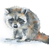 Raccoon Watercolor Painting Giclee Print 8 x 10 Nursery Art Woodland Animal Print