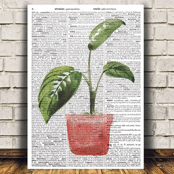 House plant print Plant art Flower poster Watercolor print RTA1495