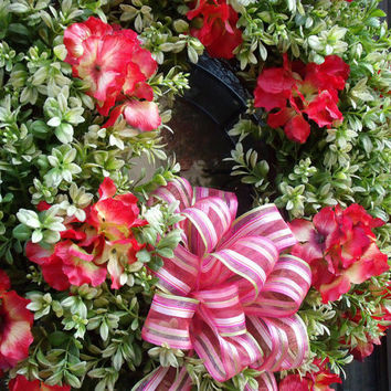Boxwood Wreaths, Hydrangea Wreaths, Spring Door Wreath, Spring Hydrangea Boxwood Wreath, Cherry Sunshine
