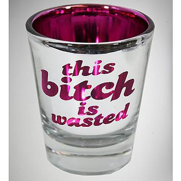 2.6 oz Pink Bitch Wasted Silver Shot Glass - Spencer's
