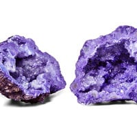 """Pair of 3""""  Geodes, Purple, Rocks, Crystals, Minerals & Petrified Wood"""