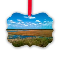 Sunny Florida Everglades Ornament