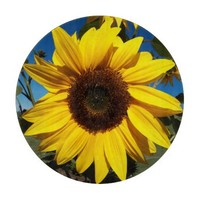 Sunny Sunflower Cutting Board