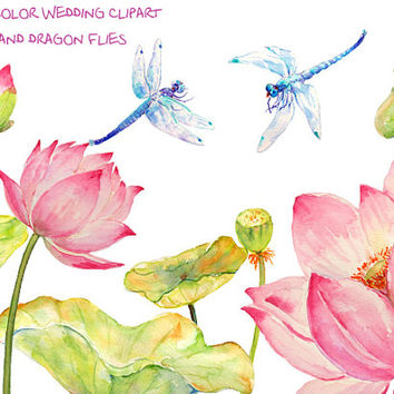 Wedding Clipart - Watercolor pink lotus flowers, leaves and seed head and 2 blue dragon flies printable instant download invitation (set5)