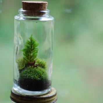 moss terrarium tiny mommy and baby deer by weegreenspot on Etsy