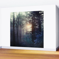 A walk in the forest Wall Mural by vivianagonzlez