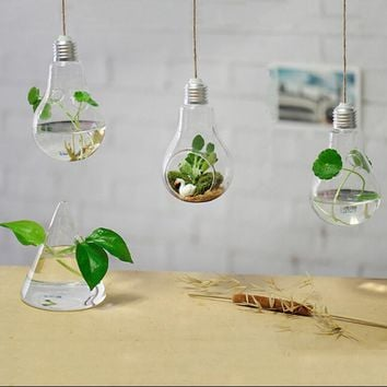Glass Light Bulb Vases