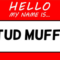 Hello My Name Is Stud Muffin T Shirt
