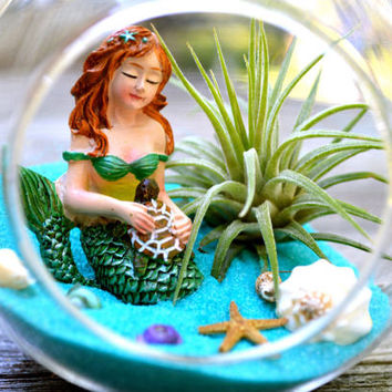 Mermaid Terrarium Kit ~ Beach Terrarium ~ Mermaid with Turtle ~ Small Glass Terrarium with Air Plant ~ Home Decor ~ Gift ~ Mermaid Figure