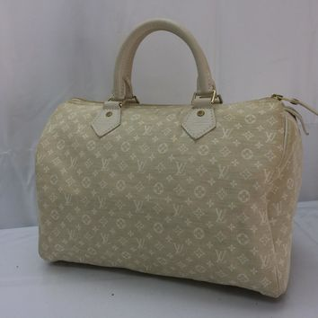 Auth Louis Vuitton Mini Canvas Speedy 30 Hand Bag 8C270220r