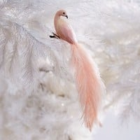 Feather Peacock Ornament - Blush