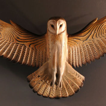 Barn Owl wood sculpture Jason Tennant