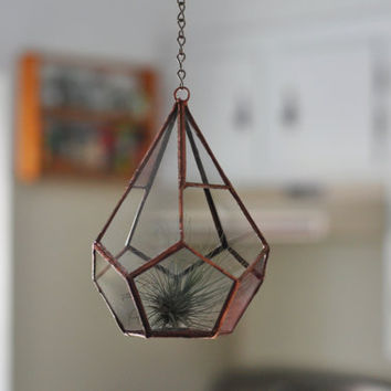 $45.00 Hanging Teardrop Glass Terrarium by ABJglassworks