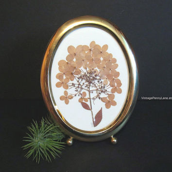 Vintage Brass Framed Dried Pressed Flower Art, Preserved Flowers