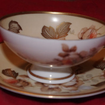 Vintage Barvaria R.W.K. Fine Bone China Tea Cup an Saucer Made in Germany