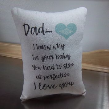 Funny dad pillow gift for dad throw pillow father cotton decor