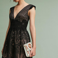 Buckingham Lace Dress