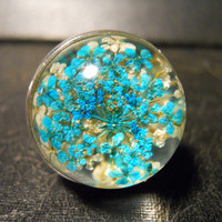 Bubble Dome Blue Pressed Queen Annes Lace Preserved Specimen Ring