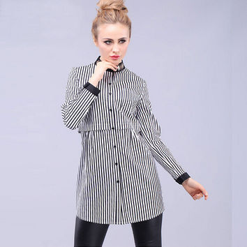 Vertical Stripe Print Long Sleeve High-Neck Shirt Dress
