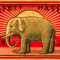 Japan Safety Matches, Elephant
