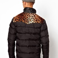 Two Angle Padded Jacket With Leopard Detail