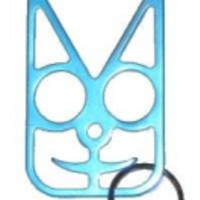 Teal Safety Cat