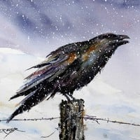 RAVEN in Snow Watercolor Print by Dean Crouser