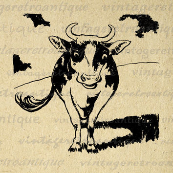 Digital Graphic Cow Image Farm Animal Download Printable Vintage Clip Art for Transfers Printing etc HQ 300dpi No.2015