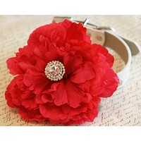 Red Floral Dog wedding, Dog Lovers, Love Red, Red wedding floral pet collar