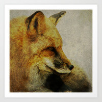 Fox Art Print by Veronica Ventress