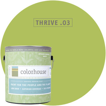Paint by Colorhouse THRIVE .03