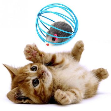 Pet Cat Kitten Cute Artificial Mouse in Rolling Rat Cage Ball Play Toy Kitten Gift Interactive Play Toys