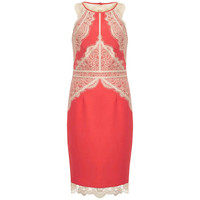 Red Lace Paneled Bodycon Midi Dress