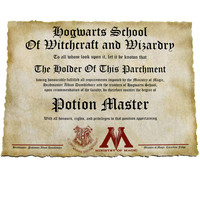 Hogwarts Diploma Canvas Print, Complete set of 4 Master of Magic, Master of Alchemy, Master of Charms, Potion Master, Harry Potter