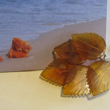 100% Natural Baltic amber Vintage brooch five leafes 6.5 gr, flower brass clasp transparent yellow brown adult unisex retro style