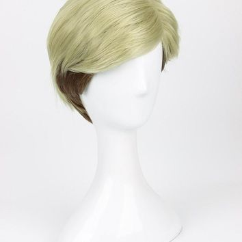 Cool Attack on Titan  Erwin Smith Wig Short Blonde Brown Ombre Color Cosplay Wig AT_90_11