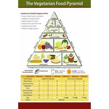 VEGETARIAN FOOD PYRAMID EDUCATIONAL POSTER 24X36 healthy living HOT NEW RARE