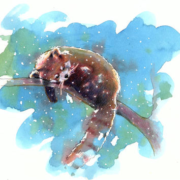 Red Panda watercolor painting Print of Original art 8x10 baby girl nursery decor woodland theme snow winter charming zoo arctic painting