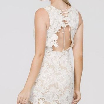 Showered in Elegance Lace Dress